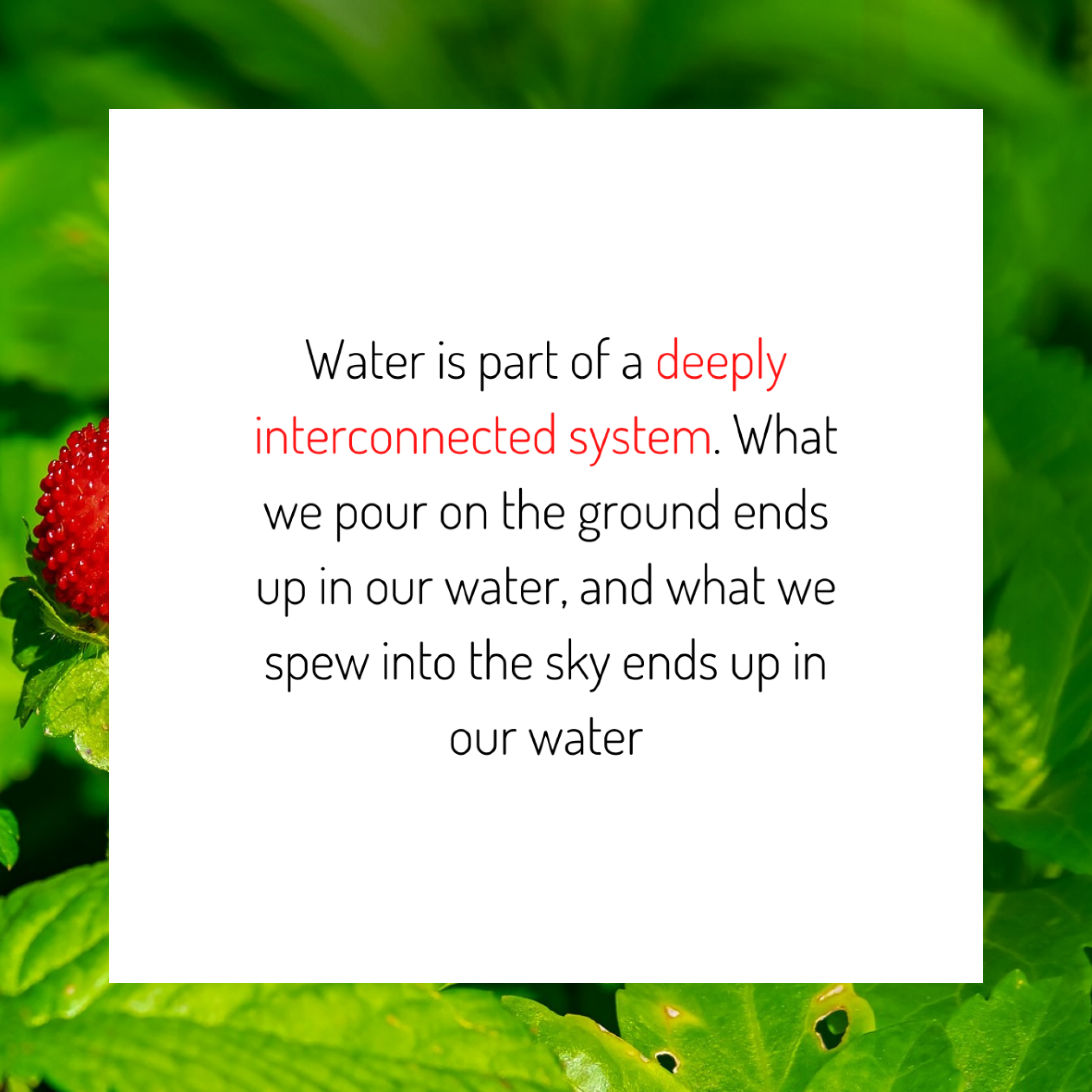 Water is Part of a Deeply Interconnected System