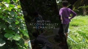 Mutual Accountability Mechanisms